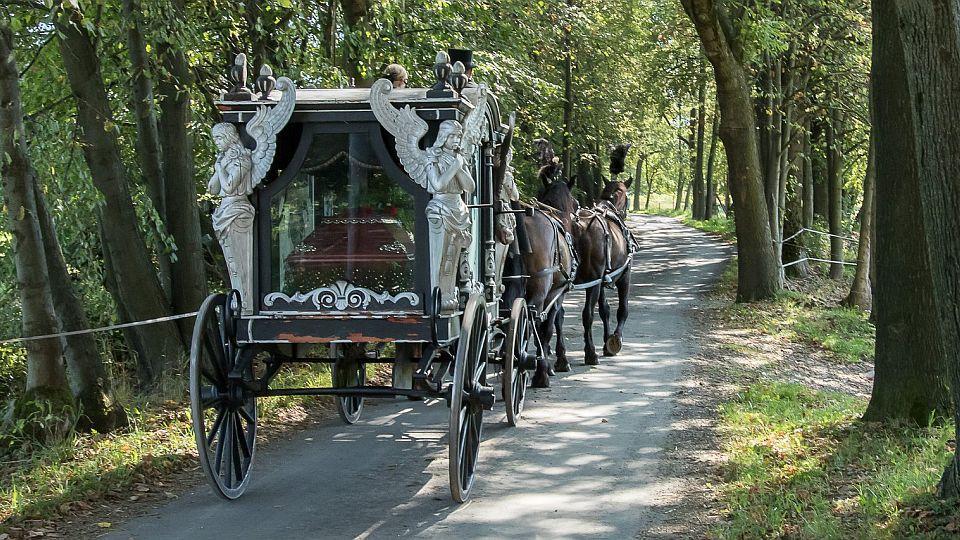 Kočár na cestě poslední aneb když jsou koně ve službách ...